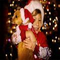 کارت پستال کریسمس 2012 ,بابانوئل, کریسمس ,بکگراند کریسمس ,تصاویر کریسمس ,جشن کریسمس در کشور ها ,سال جدید, عکس های جدید کریسمس ,عکس های زیبا از کریسمس ,عکس های سال 2012 ,عکس های کریسمس ,عکس کریسمس 2012 ,والپیپیر کریسمس, پس زمینه های زیبا به مناسبت کریسمس, پس زمینه کریمس ,کریسمس 2012 ,کریسمس در آمریکا , درخت کریسمس,کریسمس در رایش سوم,روز باکسینگ,عید پاک