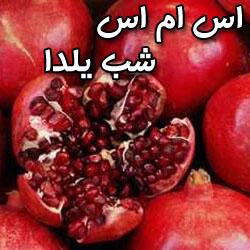 اس ام اس جدید شب یلدا 90