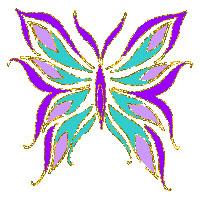 پروانه زیبا و دوجنسه که دانشمندان را شگفت زده کرده است + عکس