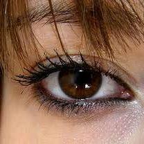 آرایش زیبا مخصوص چشم های قهوه ای