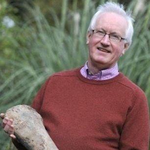 کشف فسیل 250 میلیون ساله در حیاط خانه +عکس