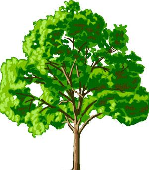 درخت مشکلات