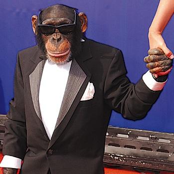 خبر مرگ میمون بازیگر جنجال به پا کرد