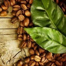 کاربردهای قهوه در خانه داری که نمی دانستید