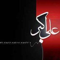 حضرت علی اکبر (ع)؛ اولین شهید کربلا