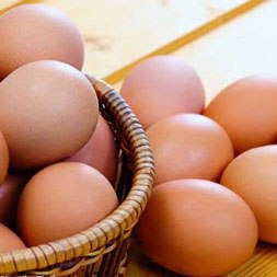 معمای تخم مرغ ها