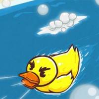 نبرد اردک در وان حمام