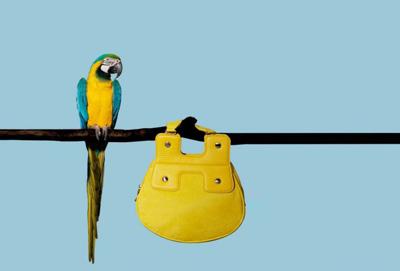 راهنمای نگهداری از کیف دستی