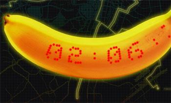 موز هوشمند اولین محصول پوشیدنی خوردنی